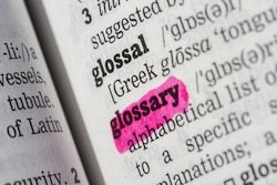 Glossary of Employment Law Terms